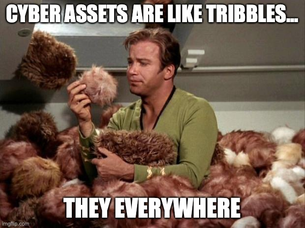 Cyber assets are like tribbles; they everywhere